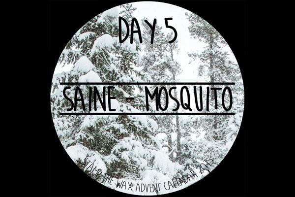 Day 5 - Saine 600x400