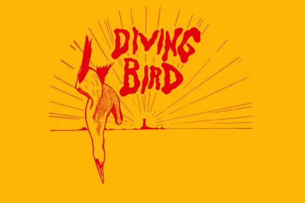 Andy Mac Diving Bird
